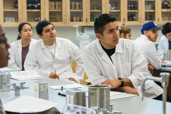 Students listen to a chemistry lecture.